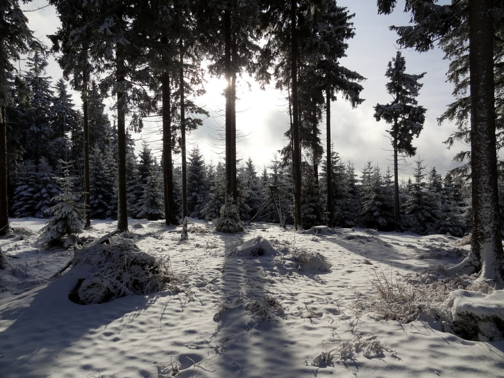 Schnee im Vogtland 2012