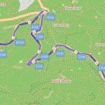 Berglauf 2017 mit Skirollern oder Cross-Skates auf den hessischen Feldberg