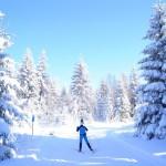Langlauf Skatingwochenende in Klingenthal vom 11. bis 13. Dezember